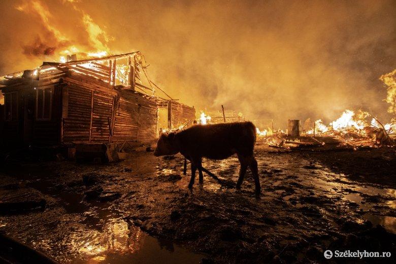 Videón a csíksomlyói tűzvész