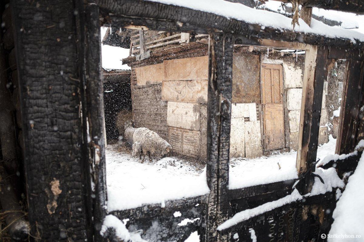 https://media.szekelyhon.ro/pictures/csik/aktualis/2021/12_januar/o_somlyo-utca-33-januar-11-vn-022.jpg