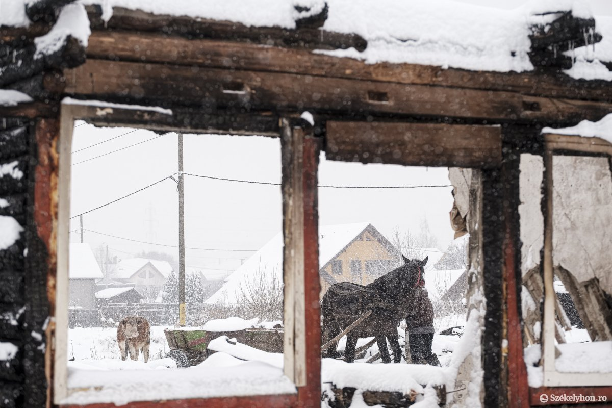 https://media.szekelyhon.ro/pictures/csik/aktualis/2021/12_januar/o_somlyo-utca-33-januar-11-vn-024.jpg