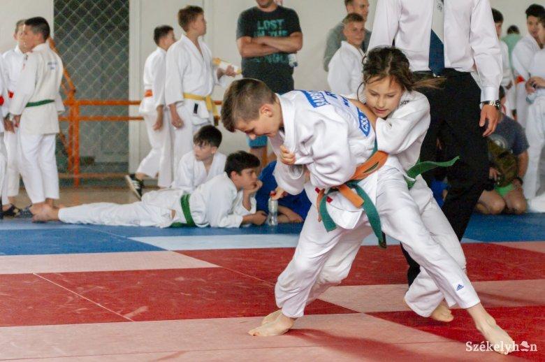 Több száz gyerek nem cselgáncsozhat Székelyföldön