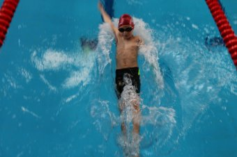 Rekordszámú úszó a 4seasons Kupán