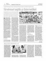 Vásárhelyi Hírlap XII. évfolyam, 91. szám