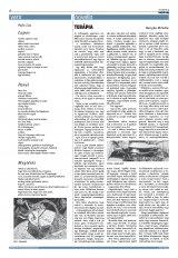 Krónika XXIII. évfolyam, 141. szám