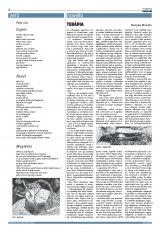 Székelyhon napilap III. évfolyam, 141. szám