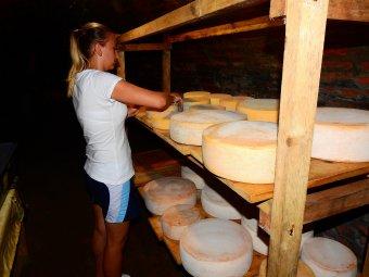 Jó sajtnak az Érmelléken is mindig van piaca