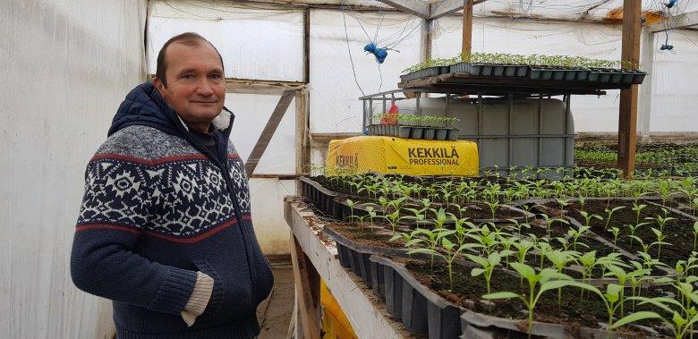 Minőség hagyományos módszerekkel: a szigorúbb áruházláncot részesíti előnyben a marosludasi agrárvállalkozó