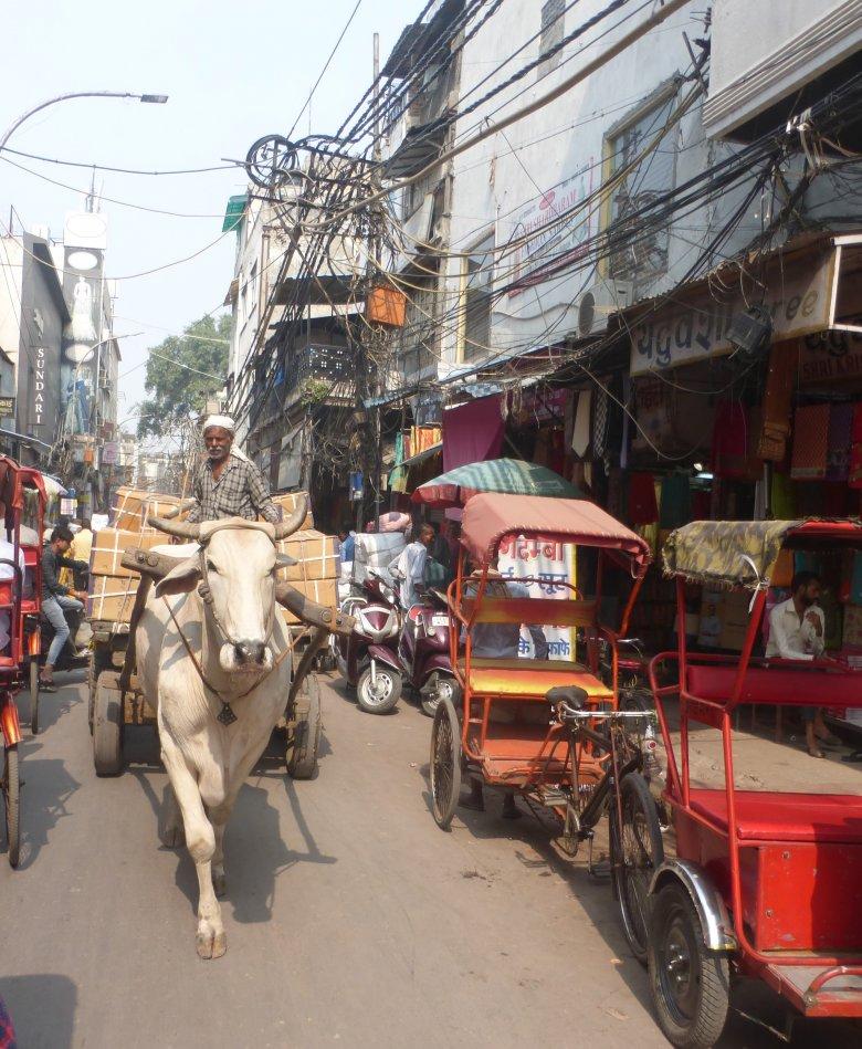A szavakba önthetetlen színes kavalkád: India