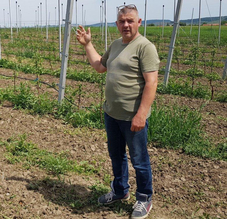 Pozitív színben mutatnák be a gazdálkodást – A politikum mellett a gazdák szervezettségén is múlik az érdekvédelem hatékonysága