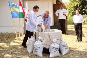 Erdélyben is készül a magyarok kenyere – partiumi búzaösszeöntést tartottak a hegyközi Siterben