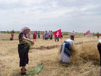 Az aratás az élet ünnepe