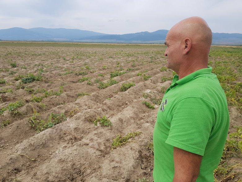 Hatalmas károk a földeken, kártalanítás reménye nélkül a gazdák