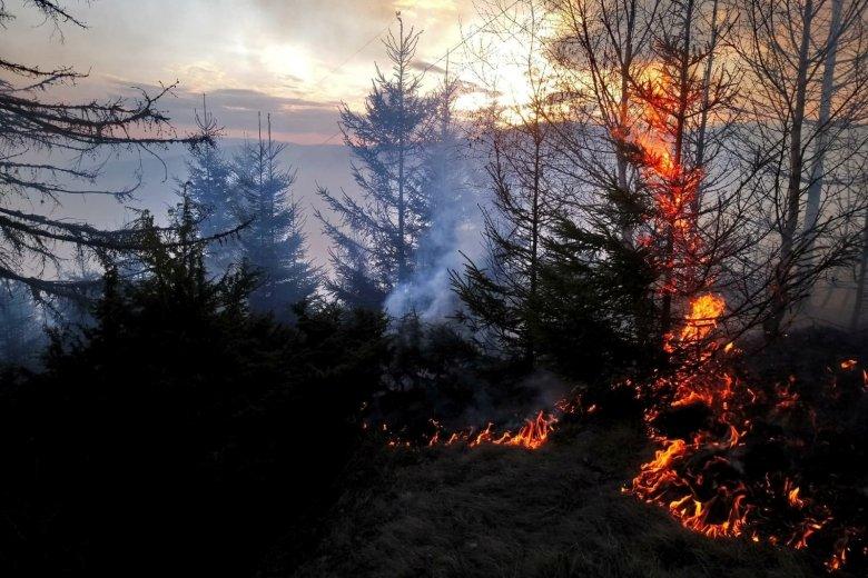 Közel egy napja küzdenek a lángokkal a Pongrác-tető mellett