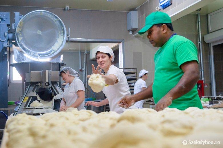 A kenyér egyelőre nem tartja el a ditrói pékséget, de egy alkalmazottat sem küldtek el