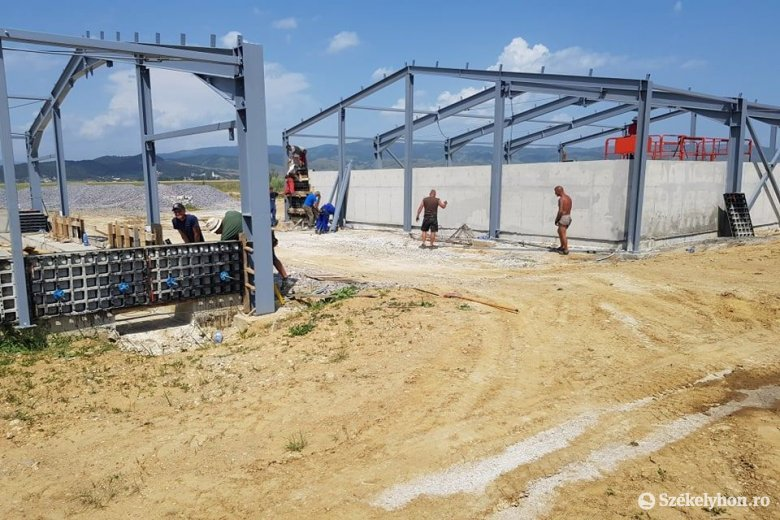Gyergyóalfaluban épül Románia egyik legnagyobb kapacitású tojásfeldolgozó üzeme