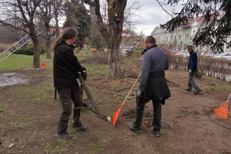 Fákat metszettek, szemetet szedtek a gyergyószentmiklósi városháza alkalmazottai