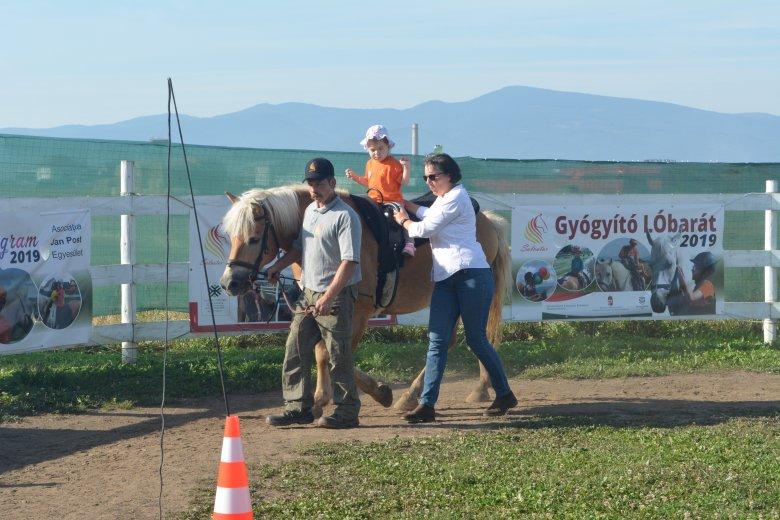 Aranypatkó Nyílt Nap: lovasterápiával a gyerekekért