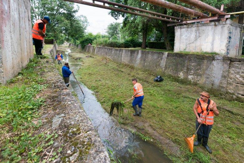 Tisztítják a patakmedreket Sepsiszentgyörgyön