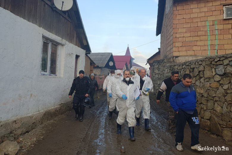 Elrendelték a kényszervágást a sepsiszentgyörgyi Örkő-negyedben sertéspestis miatt