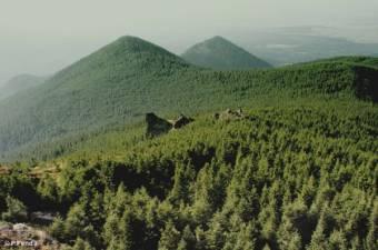 Újabb, egyszer már visszaszolgáltatott Bánffy-erdőkre tette rá a kezét a román állam