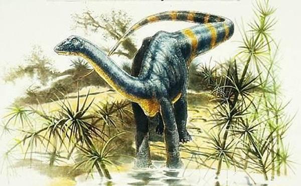 Ismét megtalálták a száz éve elfeledett erdélyi dinoszaurusz-lelőhelyeket