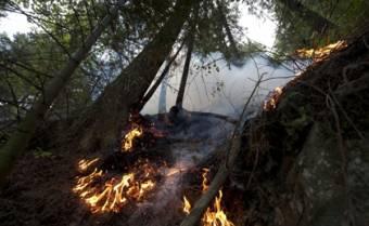 Lángokban a Balkán: Bosznia-Hercegovinában is ég a növényzet