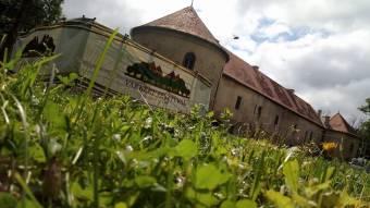 Húszmillió lejes európai uniós támogatásból újul meg a gyalui várkastély