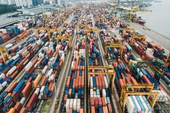 Riasztó a külkereskedelmi agrármérleg hiánya, ellátási gondokat okozhat az egyre növekvő behozatal