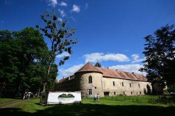 Fesztivál a gyalui kastélykertben – előadások, beszélgetések, koncertek a péntektől vasárnapig tartó rendezvényen