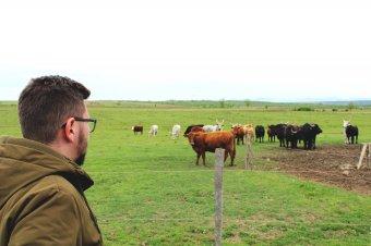 Oltean Csongor: a szatmári fiatalok és gazdák is élnek az EU adta lehetőségekkel