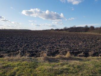 Jogi útvesztőkben elveszett földek, magyar elöljárókkal pereskedő közbirtokosságok