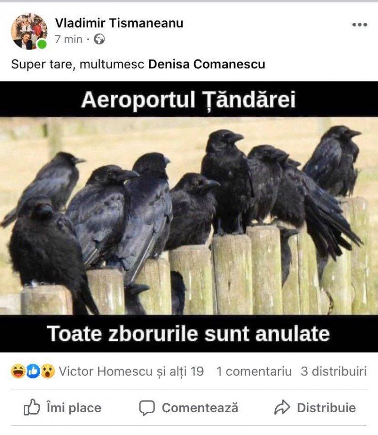 """Amerikai egyeteménél is """"bemártják"""" Asztalosék a varjas-rasszista fotót posztoló Tismăneanut"""