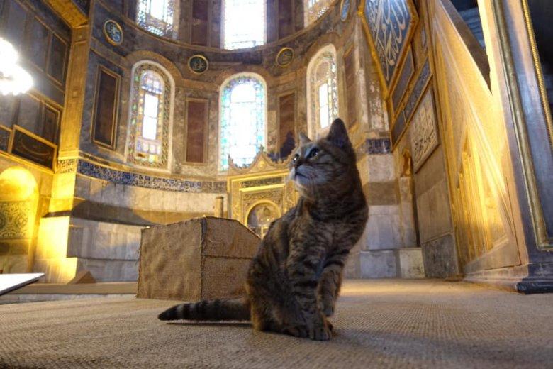 Hiába lesz mecset a Hagia Sophia, a törököknek nincs szívük utcára tenni Glit