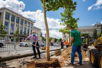 Zöldre váltana a következő évtizedben Kolozsvár