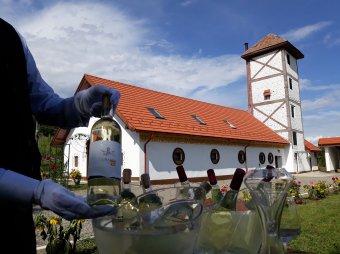 Újjáélesztett hagyományos bortermelés – Mezőszentandrás is visszakerült a szászlekencei borászat térképére