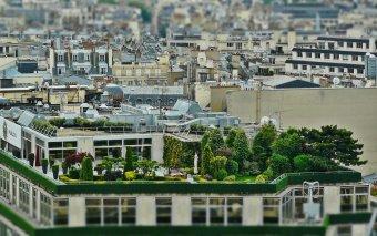 Vissza a természethez: nem lehetetlen küldetés zöldtetőt telepíteni a már meglévő épületekre