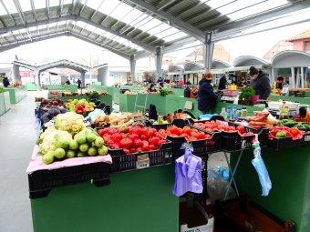 A termelőket segíti a falugazdász-hálózat és a Szatmári termék védjegy
