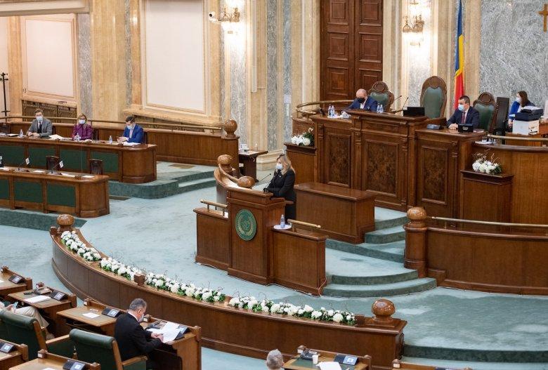 A sértegető Diana Şoşoacă nem képviselheti a szenátust írásbeli figyelmeztetése nyomán