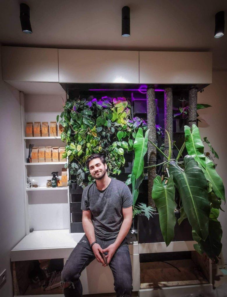 Egyre többen vágynak dzsungelhangulatú lakásra – Török Csongor tájépítész tanácsai