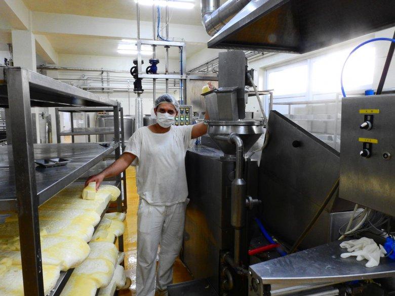 Erdélyi sikertörténet: ahol tényleg tejből készülnek a tejtermékek