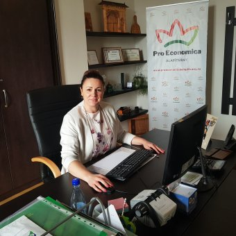 Politikafüggő a partiumi gazdaságfejlesztés – Kozma Mónika, a Pro Economica Alapítvány vezetője a tervezett pályázatokról