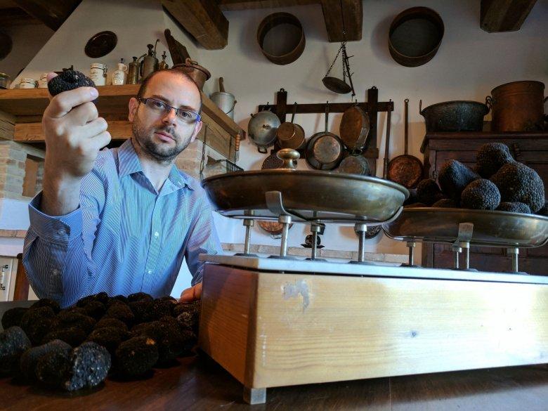 Ínyencség Erdélyből, de nem erdélyieknek: nő az érdeklődés a szarvasgomba iránt, de nálunk inkább csak szedik