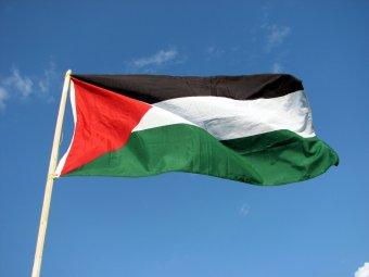 Több tucat palesztin tüntetett Temesvár központjában