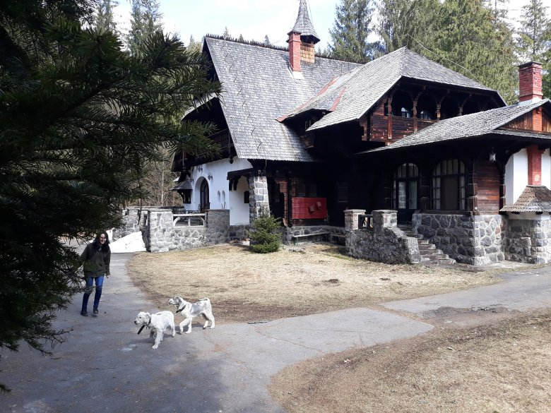 Laposnya és Remete a Romsilva zsákutcájában: erdészeti és vadászati érdekek gáncsolják Maros és Hargita megye összekapcsolását