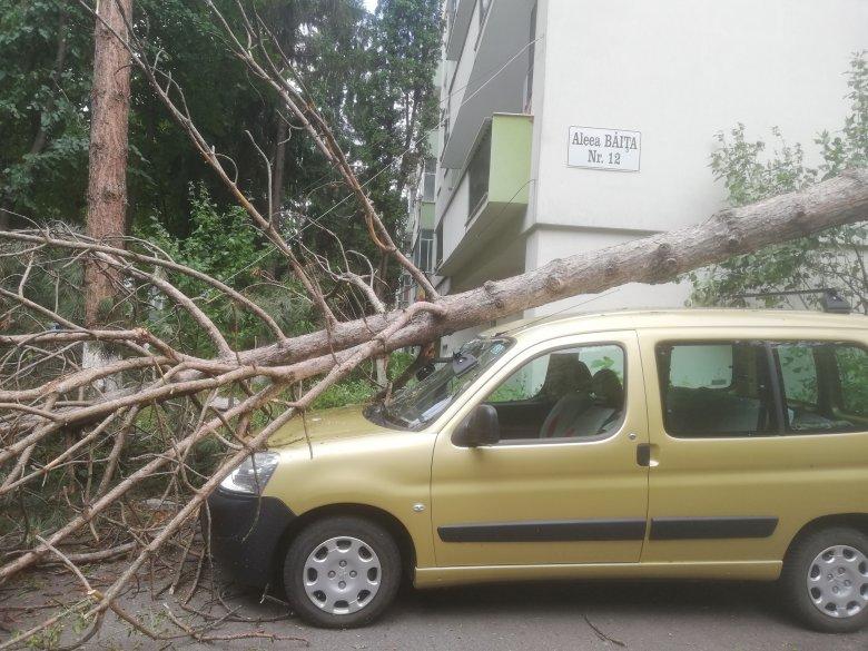 Számon kérik a hatóságokon a megkésett viharriasztást a kolozsváriak