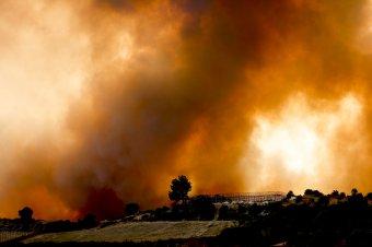 Második napja pusztítanak erdőtüzek a török riviérán