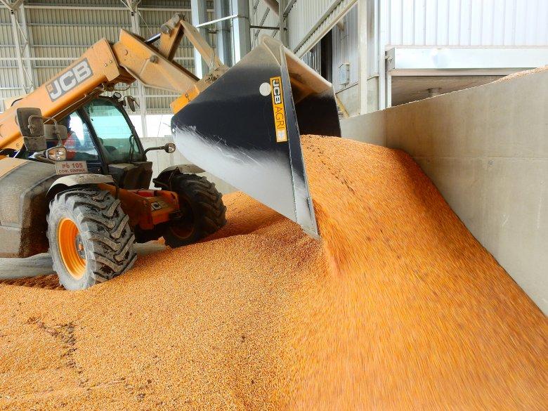 Helyi gabonából készül a legjobb takarmány: gazdaintegrációval segíti a termelőket a kerelőszentpáli takarmánykeverő üzem