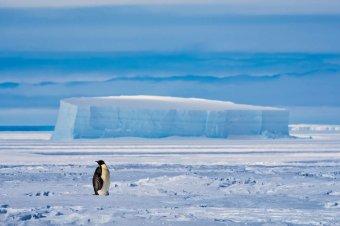 Hatalmas jéghegy vált le az Antarktiszról
