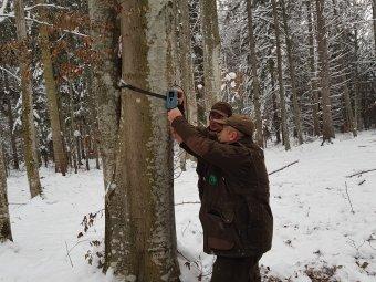 A vadgazdálkodás újraélesztését kérik a tárcától – Visszájára fordult a túlzott vadvédelem