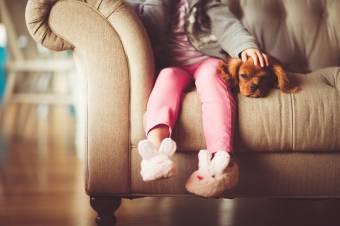 Kutya a tömbházban – lehetséges, de nagy felelősség