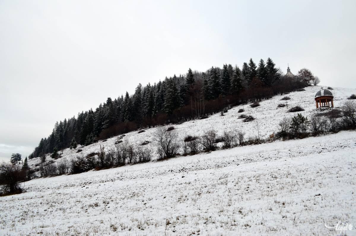 A Kissomlyó-hegye •  Fotó: Jánosi Csaba